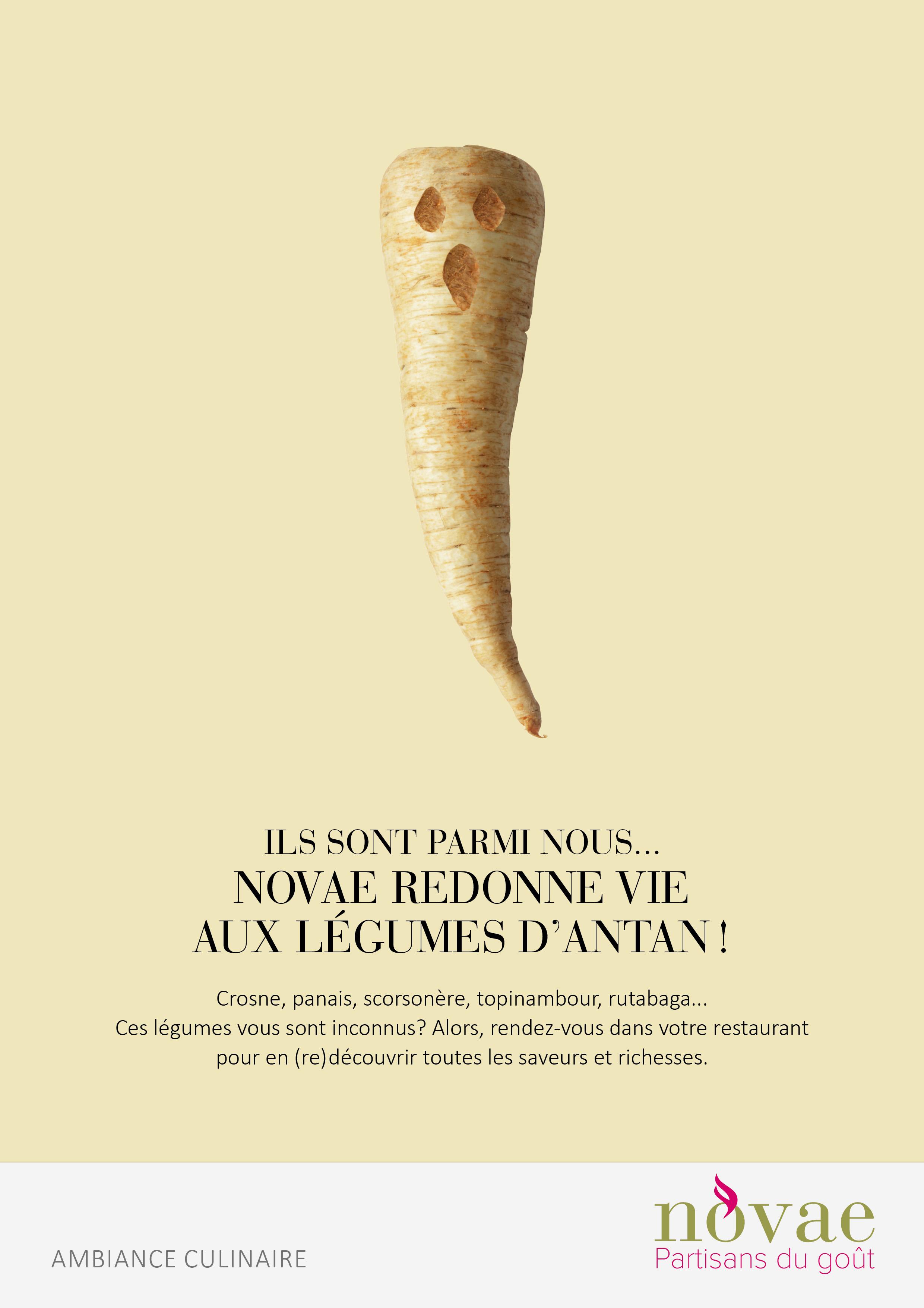 novae_legumes_anciens